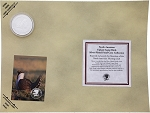 Collectible Coin Grouse