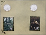 Collectible Coins Moose